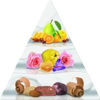 wella-professionals-invigo-nutri-enrich-nourishing-anti-static-spray