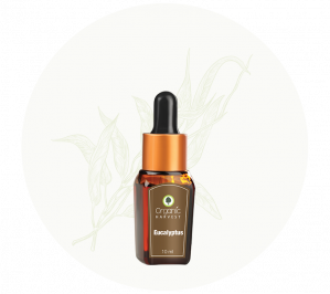 Organic Harvest Eucalyptus Essential Oil (10ml)