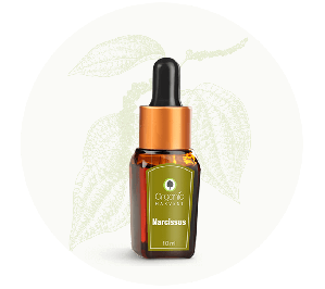 Organic Harvest Narcissus Essential Oil (10ml)