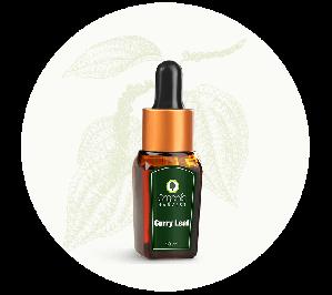 Organic Harvest Curry Leaf Essential Oil (10ml)